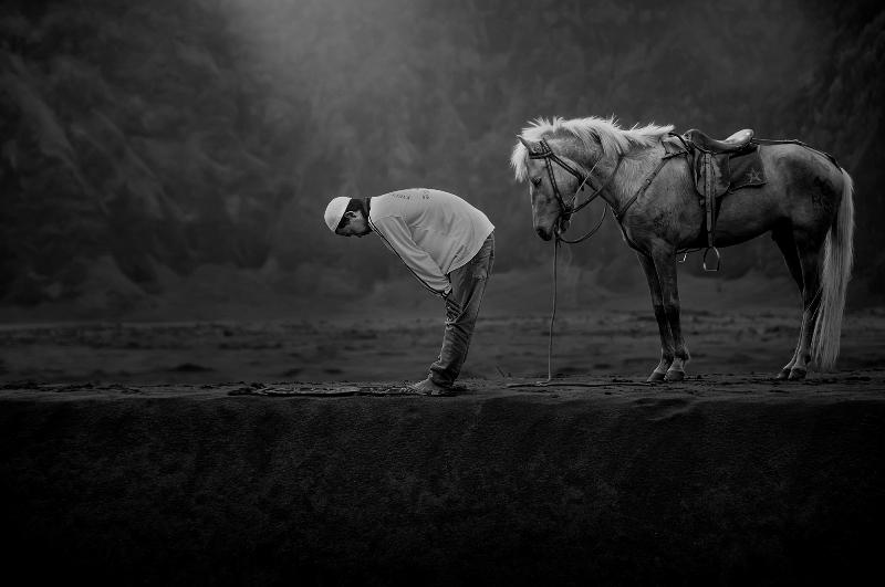 Dinominasikan dalam kategori Arts and Culture. Karya Muhammad Berkati tentang seorang muslim yang melaksanakan shalat sambil ditunggui kuda peliharaannya. (Muhammad Berkati—2015 Sony World Photography Awards)
