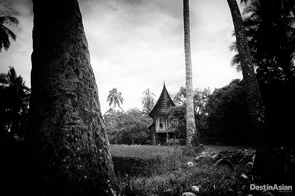 Rumah gadang tua yang banyak ditinggalkan penghuninya.