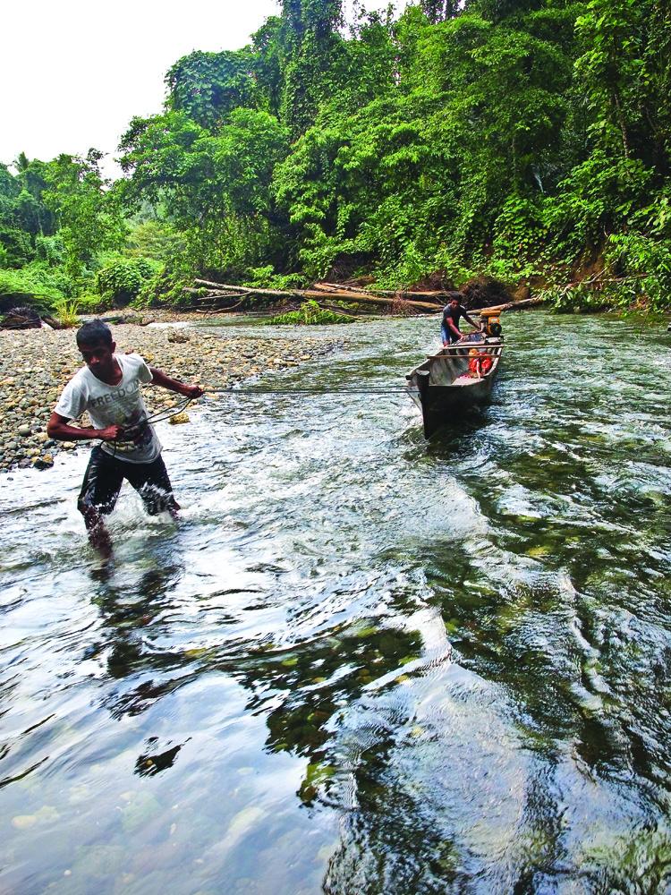 Bila sungai terlalu dangkal, perahu harus ditarik.
