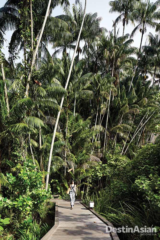 Jalanan setapak di pulau yang bisa diakses tamu.