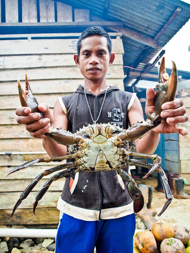 Warga Desa Sepo memperlihatkan kepiting rawa berukuran jumbo yang didapatnya.