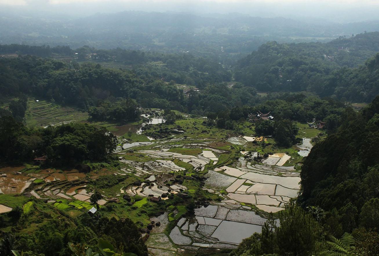 Batutumonga, distrik pegunungan yang menawarkan udara sejuk dan pemandangan lanskap memikat.