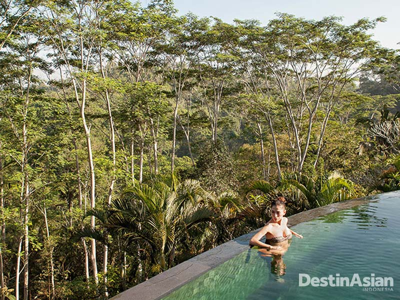Kolam renang Bukit Naga yang menghadap langsung ke hutan.