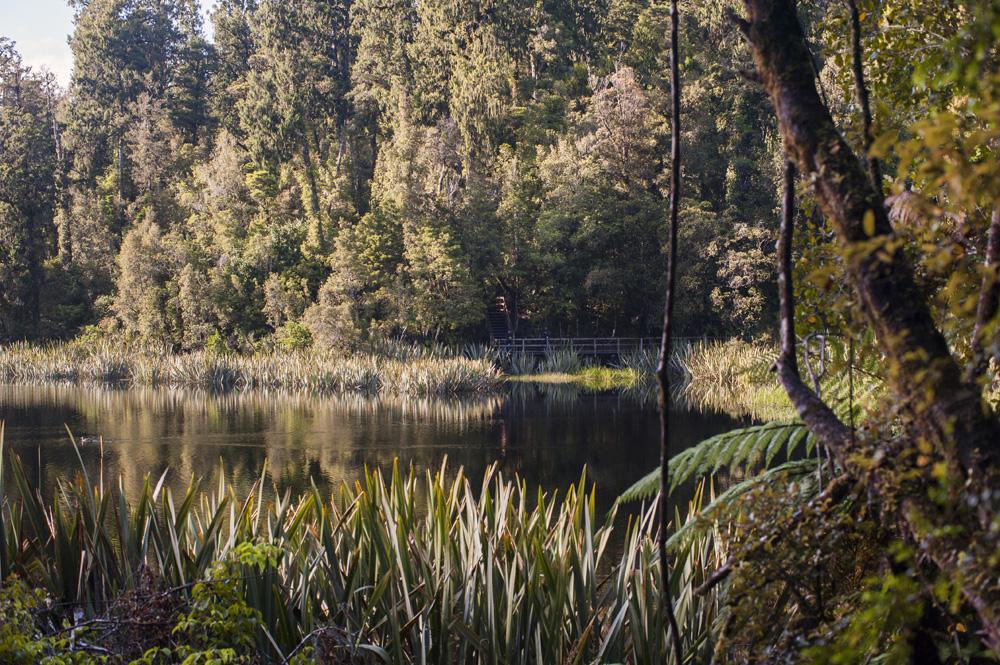 Danau Matheson bukan danau terluas di West Coast, tapi pastinya yang paling fotogenik.