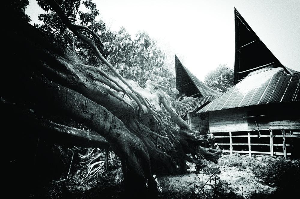 Rumah adat yang menjadi saksi bisu drama dalam sebuah keluarga di Danau Toba.