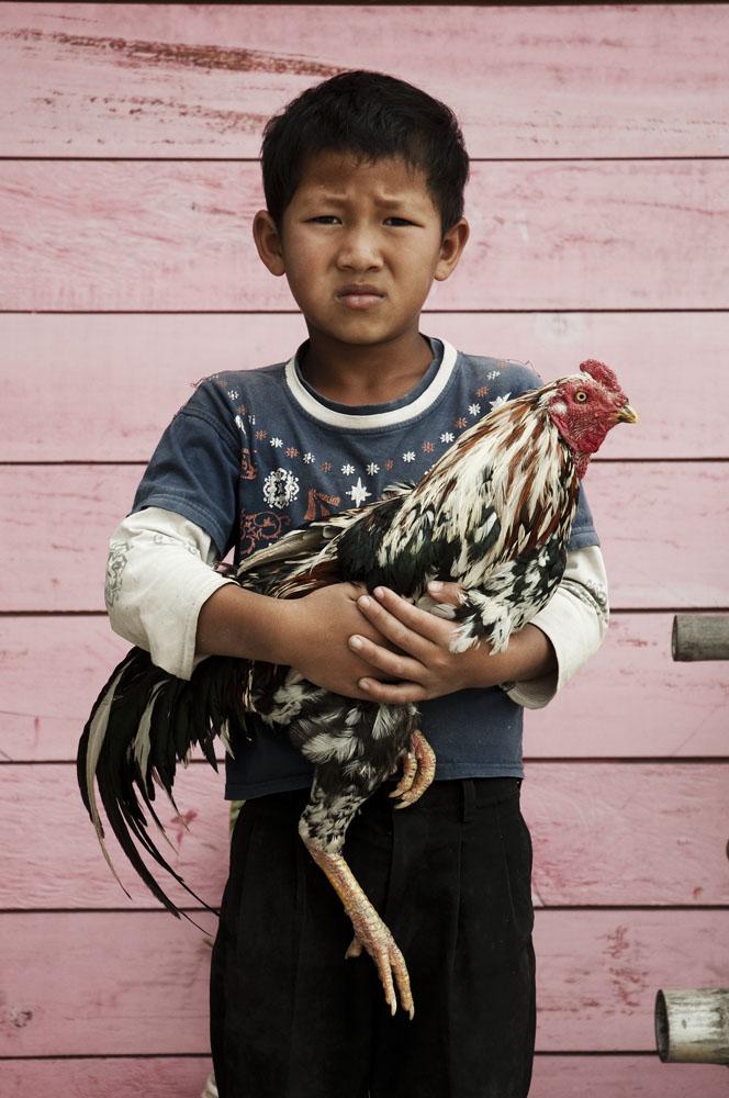 Anak kecil di Takengon dengan ayam peliharaannya.