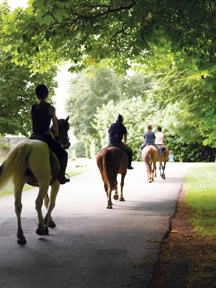 Sesi berkuda yang ditawarkan Lucknam Park Hotel, penginapan yang berdiri di kawasan perkebunan dekat Desa Colerne.