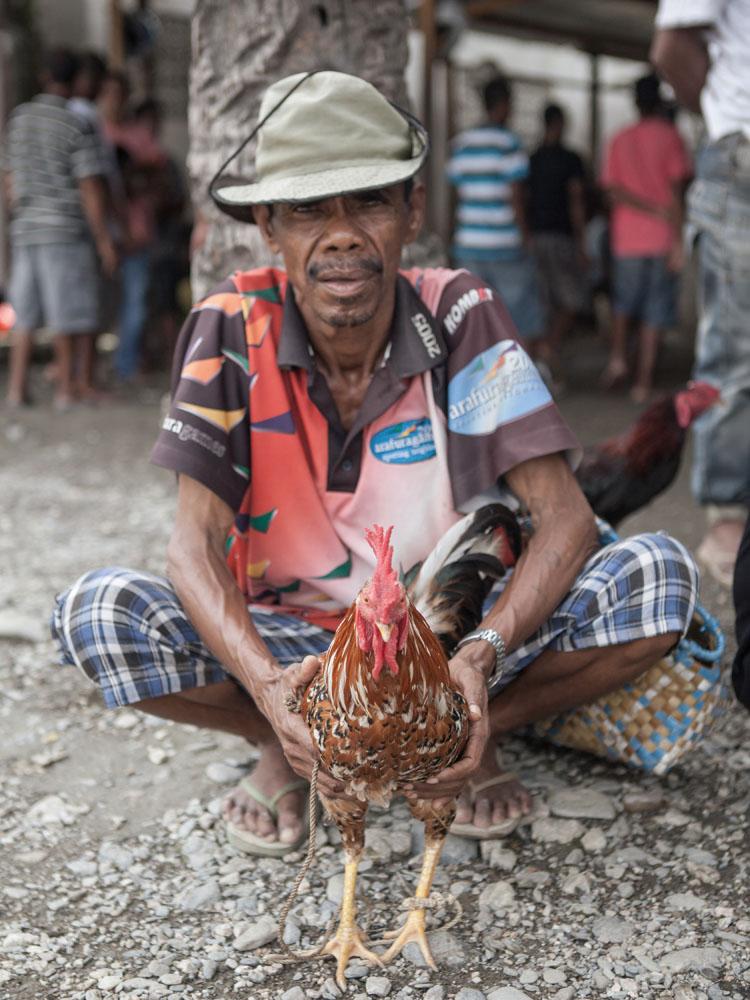 Sabung ayam menjadi aktivitas favorit para penduduk di Dili.
