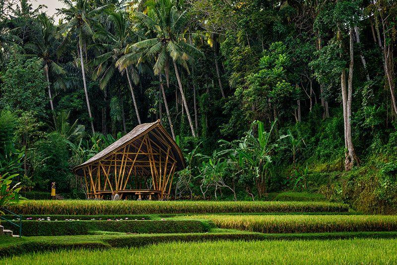 Dharma Shanti dibangun menggunakan material bambu.