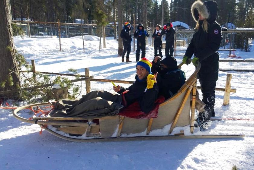 Tur menggunakan kereta salju ditarik kawanan husky merupakan aktivitas populer di Levi Village.