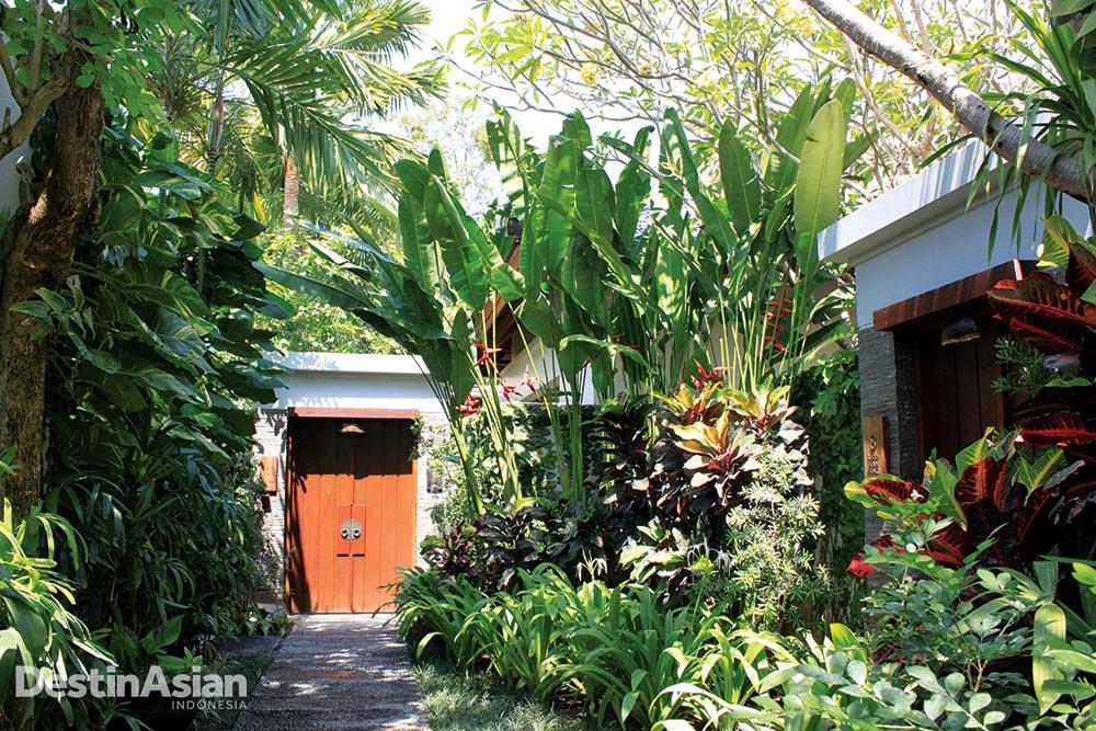Akses menuju vila dengan tanaman rimbun.