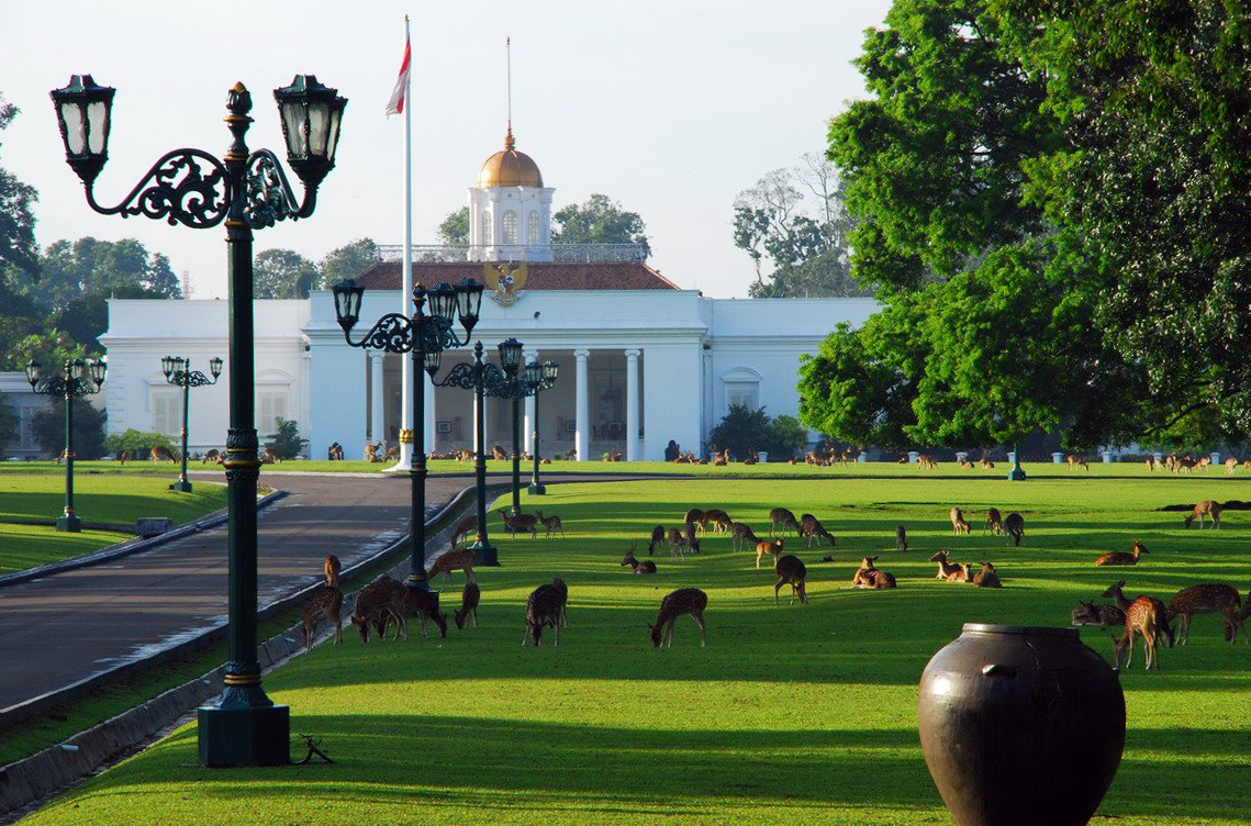 Rusa bebas berkeliaran di halaman Istana Bogor.