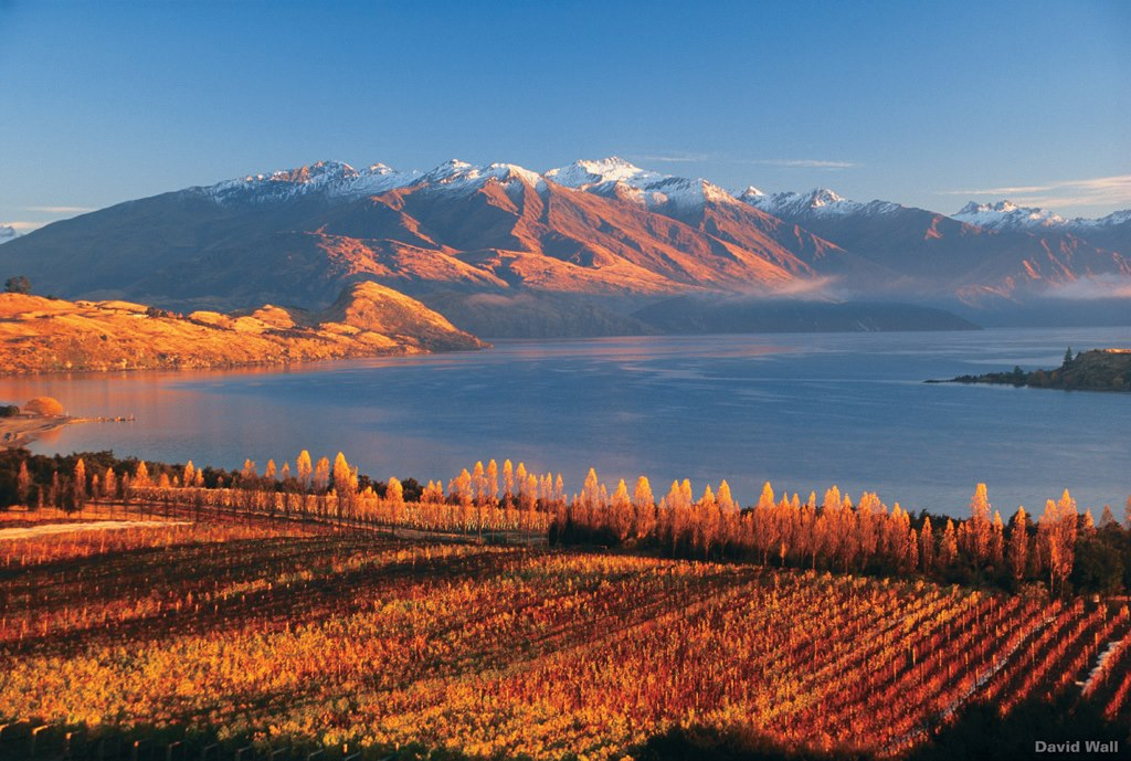 Danau Wanaka di musim semi. Foto: David Wall--Tourism New Zealand.