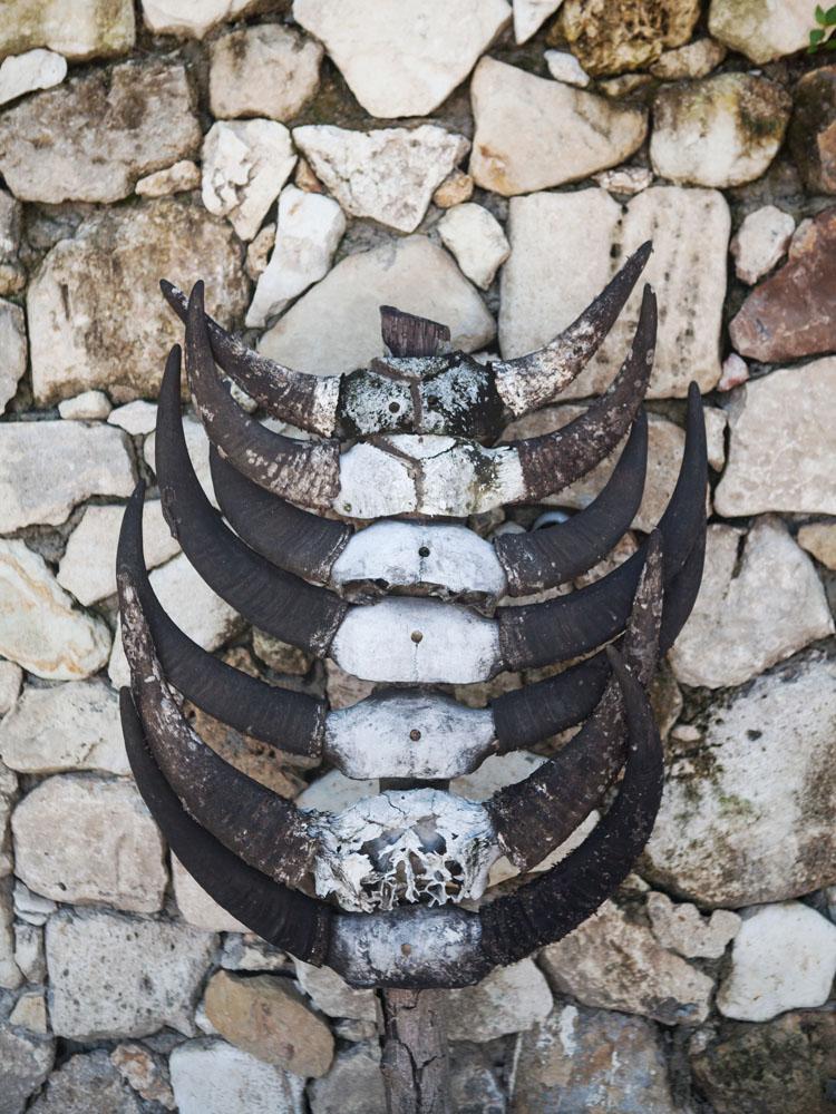 Tanduk-tanduk kerbau, hiasan khas Sumba yang menjadi dekorasi di Nihiwatu Resort.