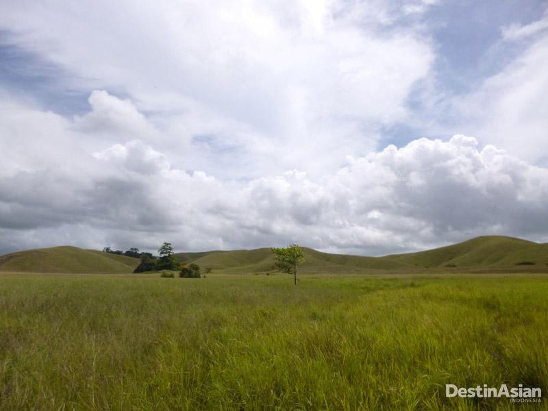 Padang rumput luas dengan bukit-bukit hijau.