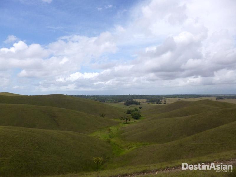 Luas Taman Nasional Rawa Aopa Watumohai mencapai empat kabupaten.