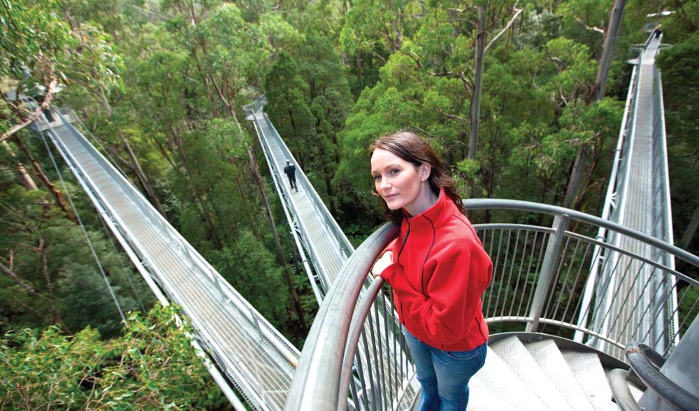 Kanopi di atas jembatan yang membentang di Otway Fly Treetop Adventure.