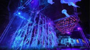 singapore night festival, singapore night festival 2018