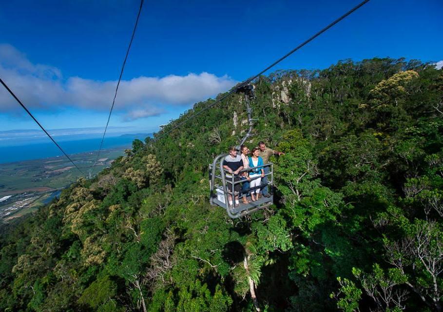 Melihat keindahan hutan dari ketinggian 175 meter.