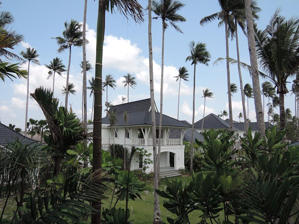 The Sanchaya berdiri di antara pepohonan kelapa di pesisir utara Bintan.