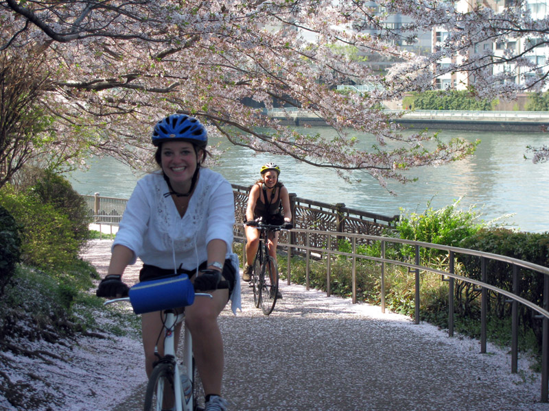 Bersepeda menyusuri taman-taman Tokyo dengan bunga sakura yang bermekaran.