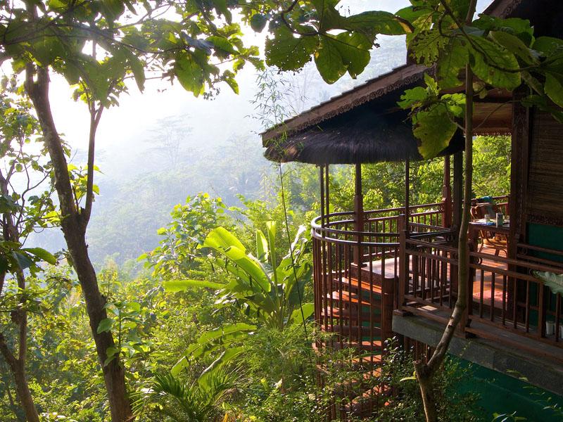 Villa Merapi yang dikelingi pepohonan rindang.