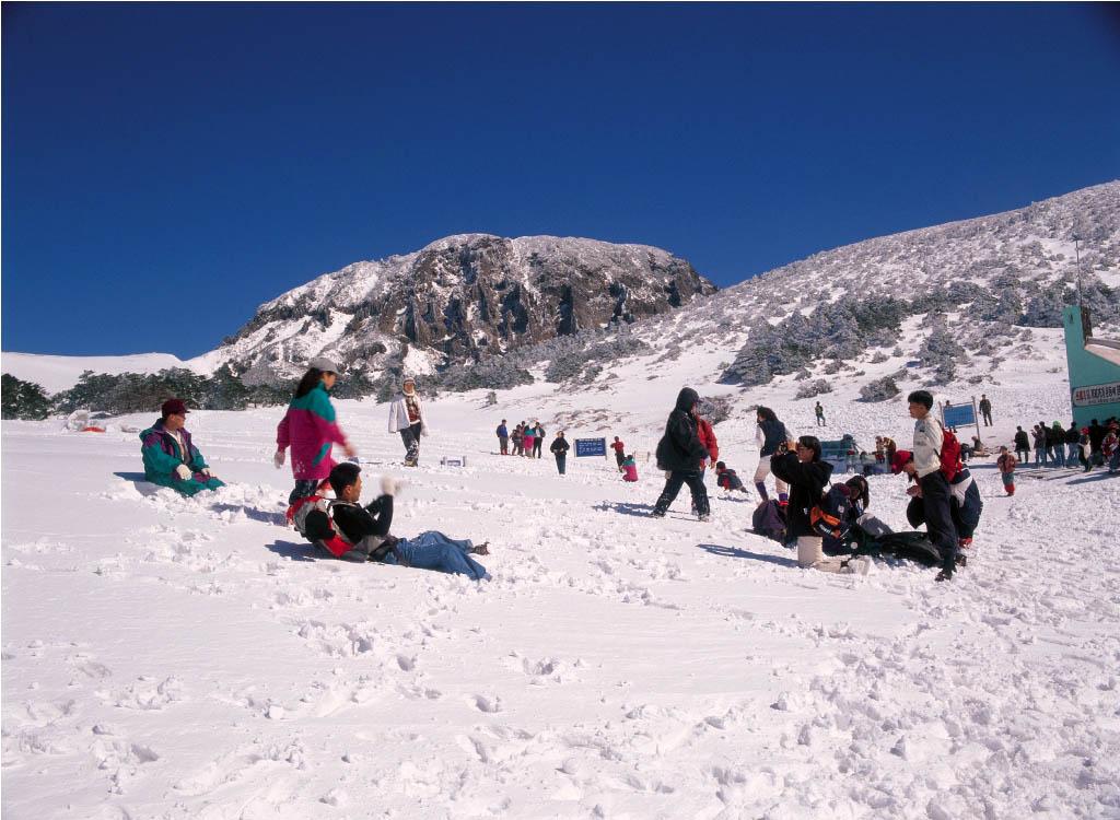 Menikmati musim dingin di Korea sangat menyenangkan karena banyak aktivitas yang ditawarkan.
