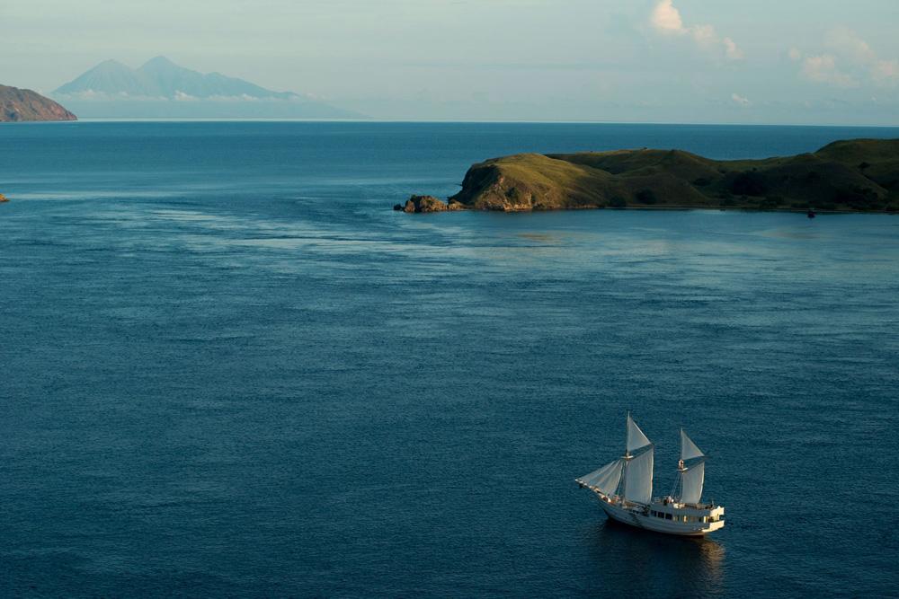 Perjalanan Alexa menjelajah lautan Indonesia.