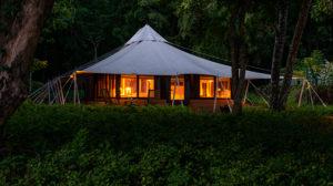amanwana pulau moyo