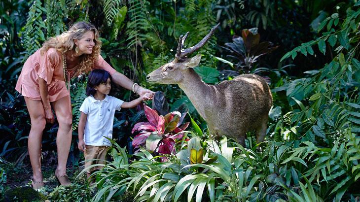 Bertemu dengan binatang-binatang di Bali Zoo.