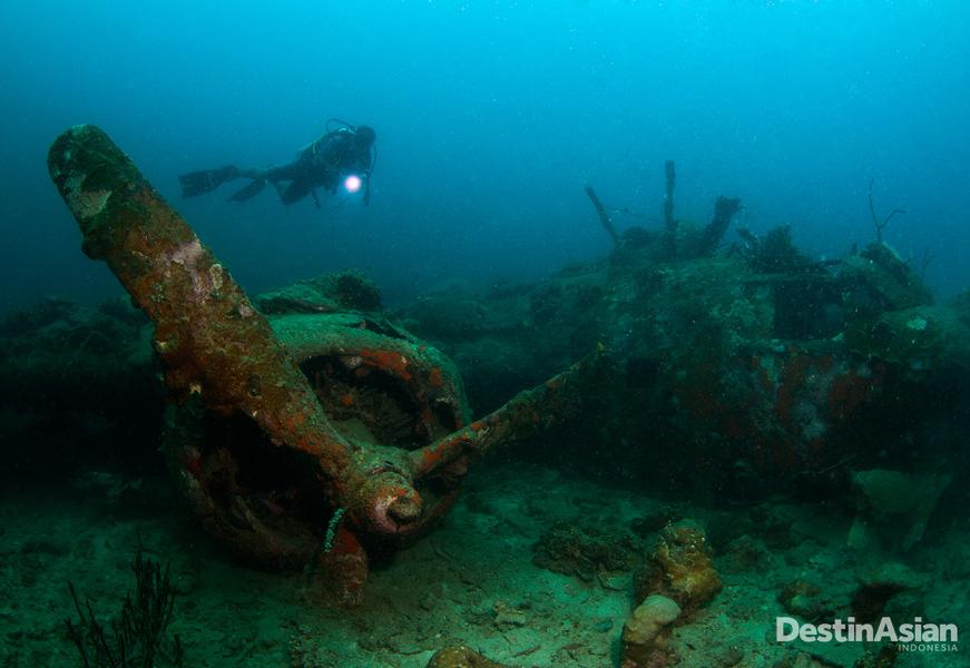 Menyelam melihat bangkai pesawat bomber menjadi aktivitas favorit penyelam. (Foto: Dedy Cono)