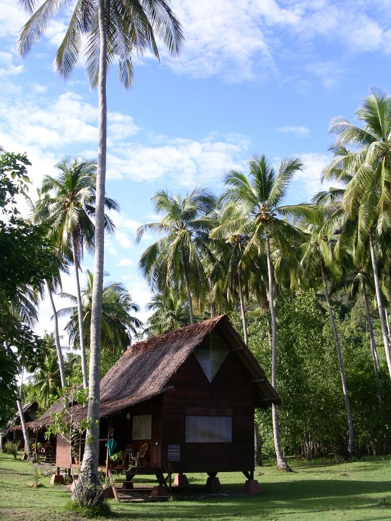 Bungalo di Cubadak Paradiso yang dikepung pepohonan kelapa.