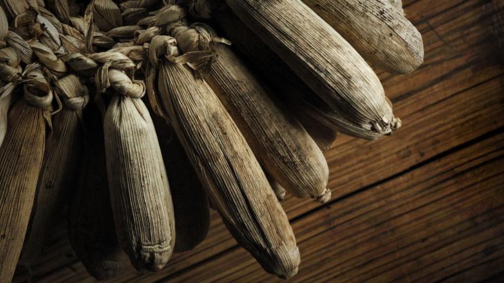 jagung persediaan makan