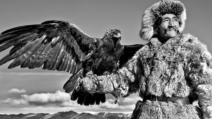 melatih elang pemburu