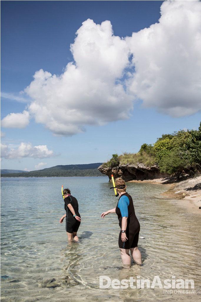 Snorkeling di Pulau Menjangan menjadi opsi aktivitas favorit tamu The Menjangan.
