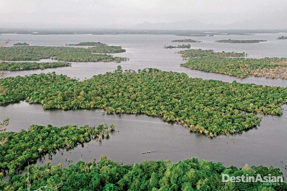 Danau Sentarum di musim basah pada Januari 2014 (Atet Dwi Pramadia).