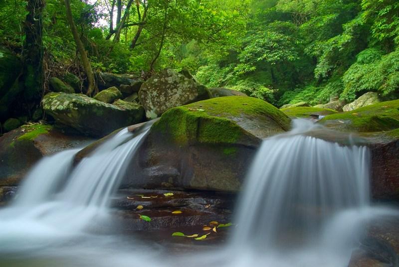 Wisata alam di Taman Nasional Yangmingshan menjadi opsi tur wajib.
